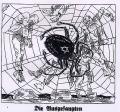 """Caricature du journal nazi Der Stürmer: """"Sucés jusqu'à la moelle"""" par le Juif"""